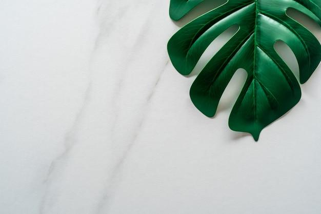 Odgórny widok białej brzmienie marmuru tekstury abstrakcjonistyczny tło z zielonym naturalnym liściem jako ramowa dekoracja.