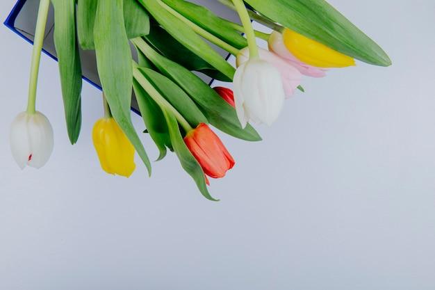 Odgórny widok bukiet kolorowi tulipanowi kwiaty odizolowywający na białym tle z kopii przestrzenią