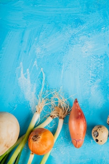 Odgórny widok cebule i jajko na błękitnym tle z kopii przestrzenią