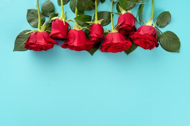 Odgórny widok czerwony rosese na błękitnym tle