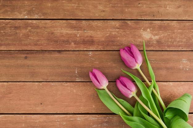 Odgórny widok kwitnie na drewnianym tle z kopii przestrzenią