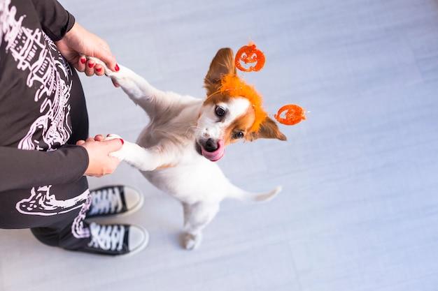 Odgórny widok młoda kobieta z jej ślicznym małym psem jest ubranym dyniowego diadem. kobieta ubrana w kostium szkieletu. koncepcja halloween