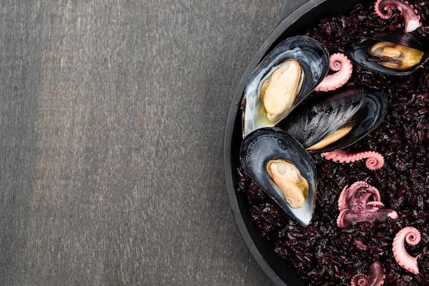 Odgórny widok mussels z kałamarnicy i kopii przestrzenią