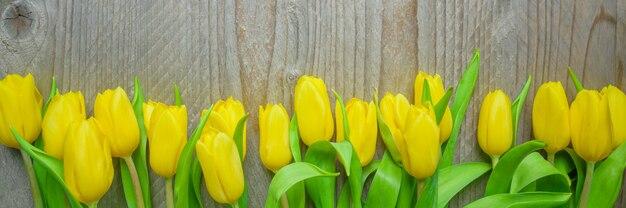 Odgórny widok planty żółci tulipany na drewnianym tle. baner do swojego projektu. pojęcie kobiet i dzień matki