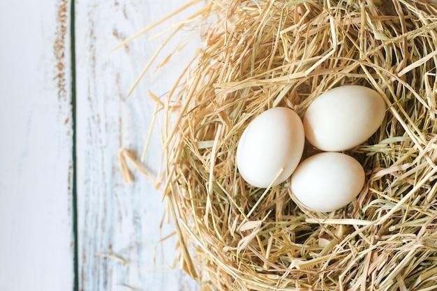 Odgórny widok świezi organicznie biali jajka na gniazdowym sianie na ciemnym grunge tle z kopii przestrzenią.