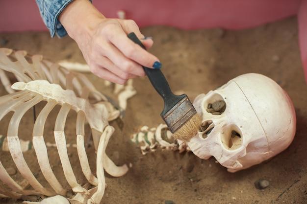 Odkrycie ludzkiej skamieliny.