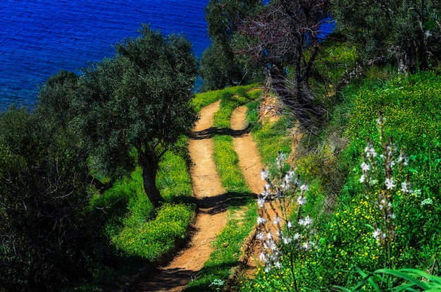 Odkrywanie natury świętej góry athos w grecji