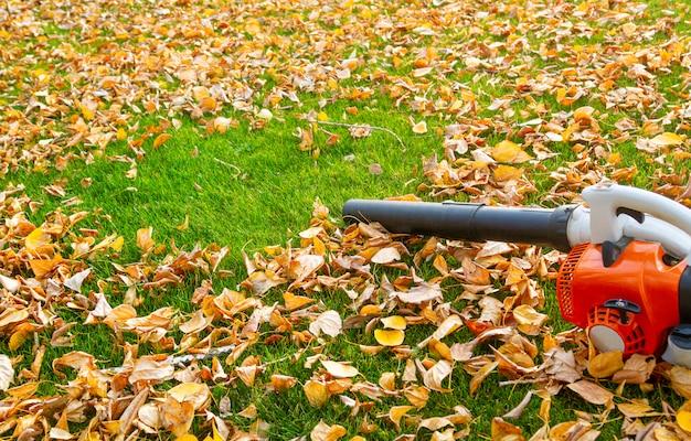 Odkurzacz ogrodowy na trawniku z żółtymi liśćmi w słoneczny dzień.