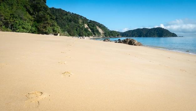 Odległa tropikalna plaża ze złotymi piaskami i śladami stóp prowadzącymi do horyzontu abel tasman nowa zelandia