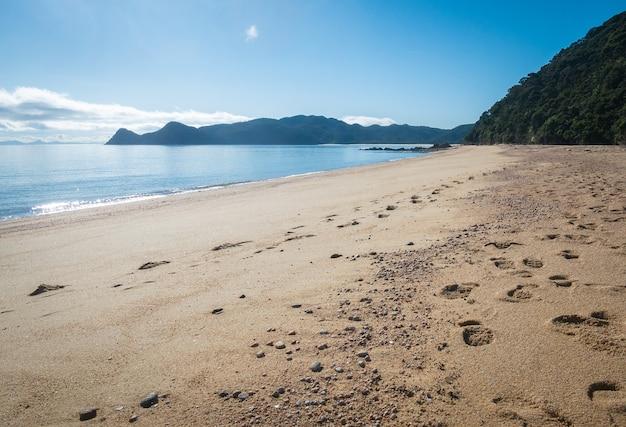 Odległa tropikalna plaża ze złotymi piaskami zastrzelona w parku narodowym abel tasman w nowej zelandii