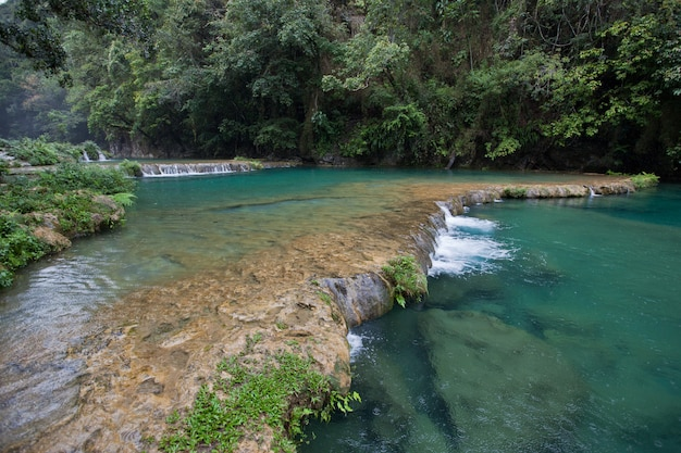 Odległe wodospady dżungli semuc champey. świeża turkusowa woda w bujnym zielonym lesie deszczowym.