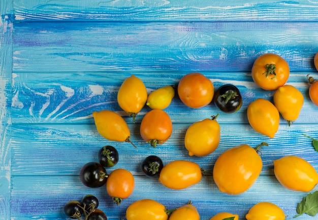 Odmiana dojrzałych naturalnych organicznych pysznych pomidorów. świeże sezonowe, lokalnie uprawiane warzywa na niebieskim drewnianym stole