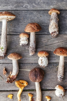 Odmiany surowe jadalne grzyby penny bun borowik leccinum na drewnianym ciemnym rustykalnym stole