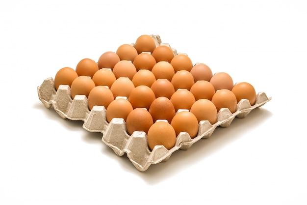 Odosobniona taca jajka