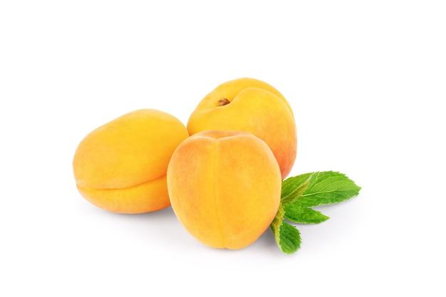 Odosobnione morele świeże całe owoce moreli