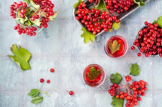 Odwar z dojrzałych jagód kaliny w przezroczystych szklankach i jagód kaliny w miskach obok stołu. medycyna alternatywna, odżywianie witaminowe i wellness. widok z góry. skopiuj miejsce