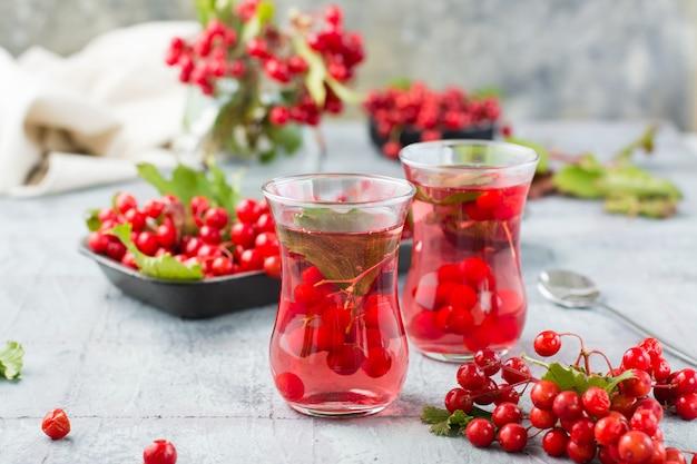 Odwar z dojrzałych jagód kaliny w przezroczystych szklankach na stole. medycyna alternatywna, odżywianie witaminami i wellness