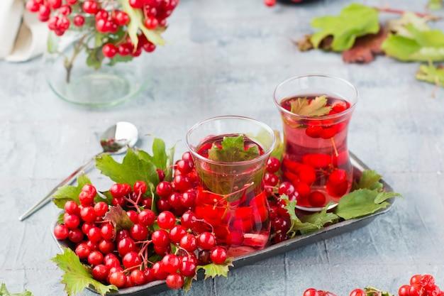 Odwar z dojrzałych jagód kaliny w szklankach i gałęziach z jagodami i liśćmi kaliny na podłożu na stole. medycyna alternatywna, wellness i żywienie witaminowe