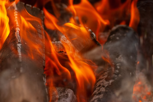 Ogień palenie drewna tło z miejsca na kopię. widok makro. może być wykorzystany do twojej kreatywności.