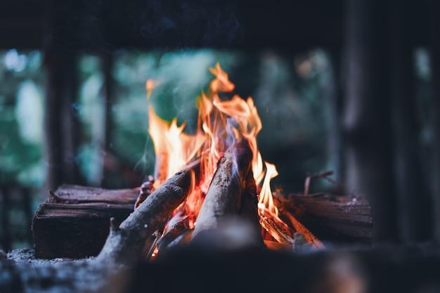 Ogień rozświetla się drewnianymi kijami
