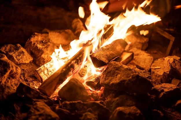 Ognisko. ogień. płomienie płonące drewno opałowe noc las