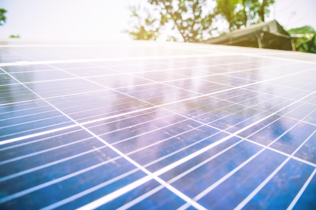 Ogniwo słoneczne w farmie słonecznej z zielonym drzewem i oświetleniem słonecznym odzwierciedlają