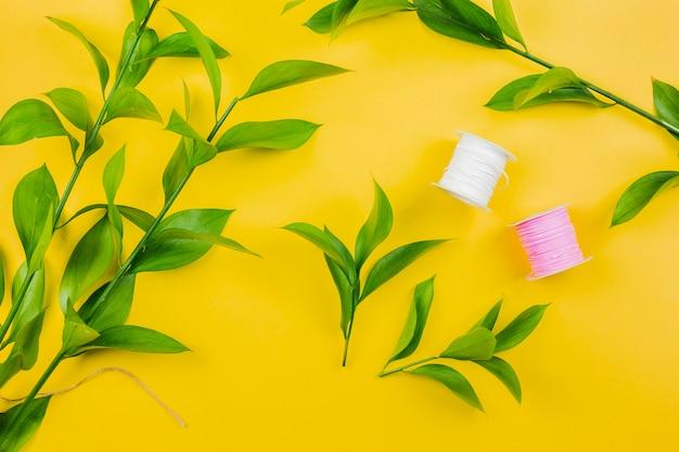 Ogólny widok gałązek zielonych liści z białymi i różowymi szpulkami nici na żółtym tle