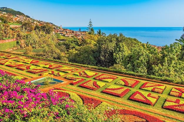 Ogród botaniczny w funchal, madera, portugalia.