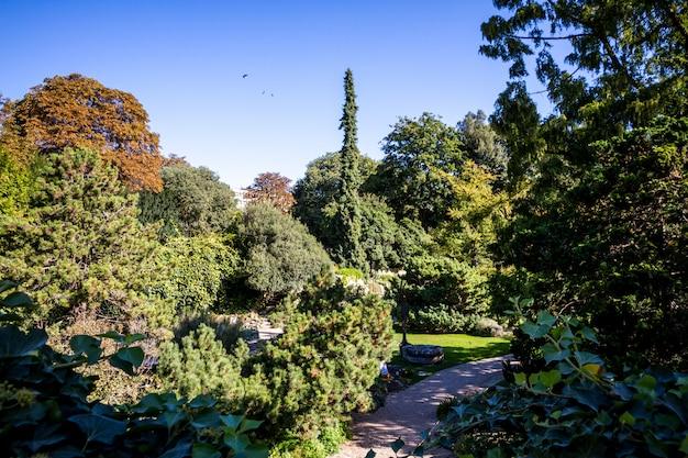 Ogród jardin des plantes, paryż, francja