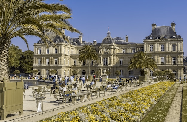 Ogród luksemburski kwietnik i palma przed pałacem znajduje się za paryżem we francji