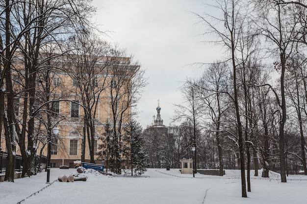 Ogród michajłowski w zimie sankt petersburg, rosja.