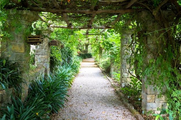 Ogród o konstrukcji pergoli o jasnych kolorach w okresie późnego lata. ta architektura i design zostały zainspirowane naturą.
