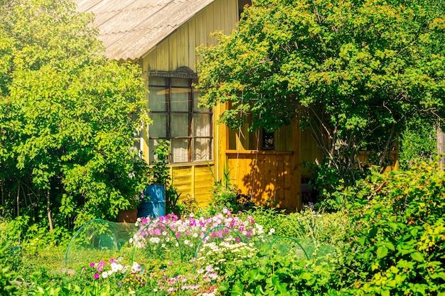 Ogród przed wiejskim domem w słoneczny letni dzień