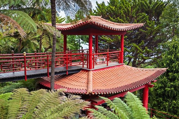 Ogród tropikalny monte palace w funchal, wyspa madera, portugalia