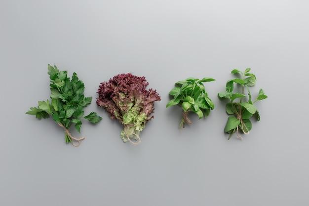 Ogrodnictwo i koncepcja zdrowego odżywiania z różnymi ziołami i liśćmi sałaty
