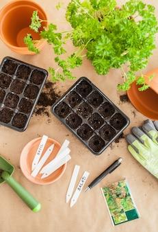 Ogrodnictwo, sadzenie w domu. wysiew nasion w polu kiełkowania