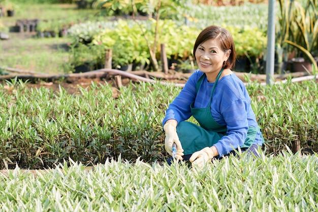 Ogrodnictwo starsza kobieta