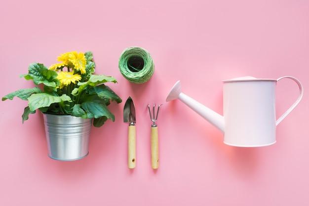 Ogrodnictwo z konewką i kwiatami gerbera na różowo. knolling widok z góry.