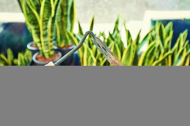 Ogrodnictwo - zestaw narzędzi dla ogrodnika i doniczki w słonecznym ogrodzie