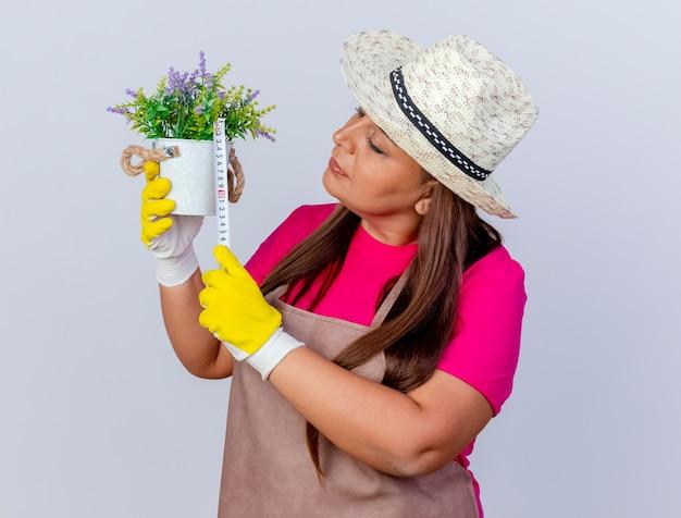 Ogrodniczka w średnim wieku kobieta w fartuchu i kapeluszu w gumowych rękawiczkach trzymająca roślinę doniczkową mierzącą ją taśmą mierniczą wyglądająca na zaintrygowaną stojącą na białym tle