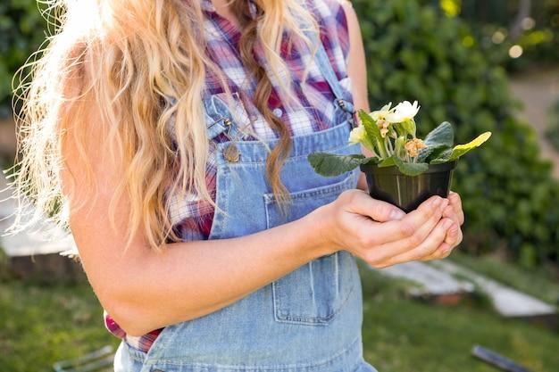 Ogrodniczki kobieta trzyma kwiaty w ogródzie