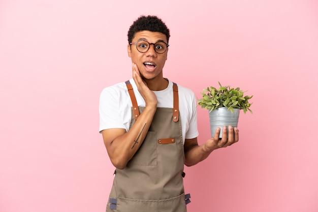 Ogrodnik afrykański mężczyzna trzymający roślinę odizolowaną na różowym tle z zaskoczeniem i zszokowanym wyrazem twarzy