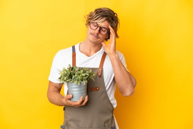 Ogrodnik blondyn trzyma roślinę na białym tle