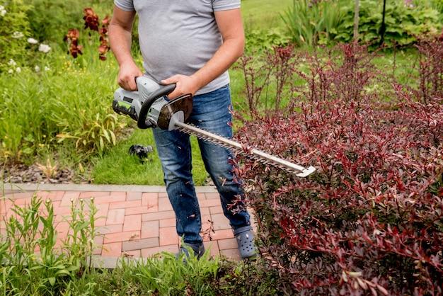 Ogrodnik do przycinania krzewów z nożycami do żywopłotu