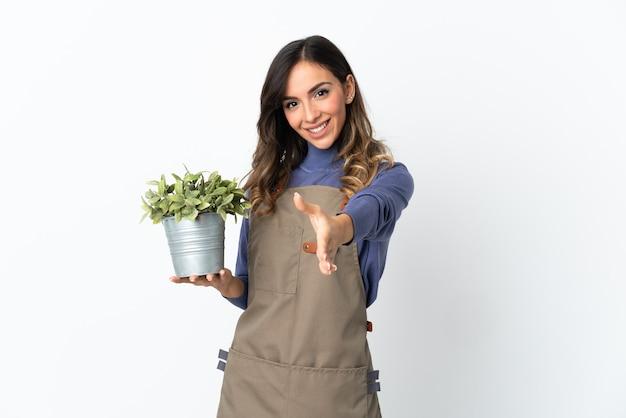 Ogrodnik dziewczyna trzyma roślinę na białym tle na białej ścianie, ściskając ręce za zamknięcie dużo