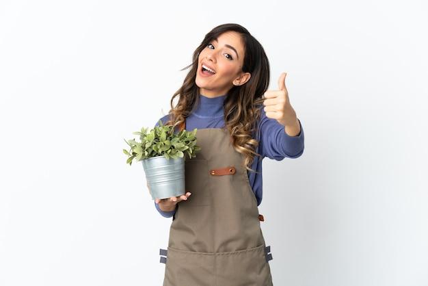 Ogrodnik dziewczyna trzyma roślinę na białym tle na białej ścianie z kciukami do góry, ponieważ stało się coś dobrego