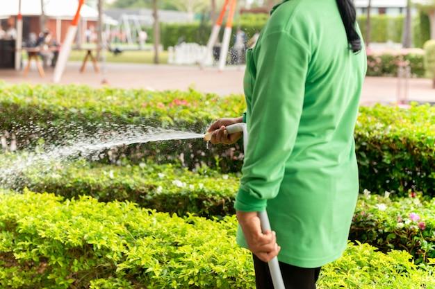 Ogrodnik kobieta podlewania roślin z wężem w ogrodzie.