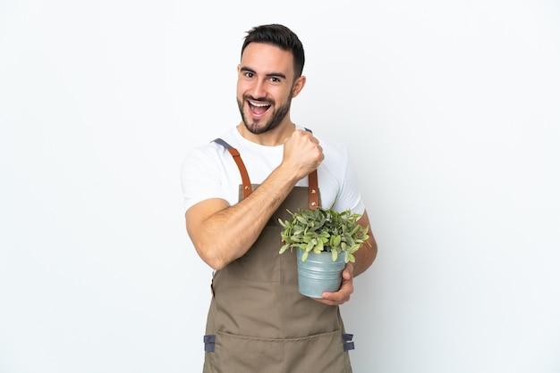 Ogrodnik mężczyzna trzyma roślinę na białym tle