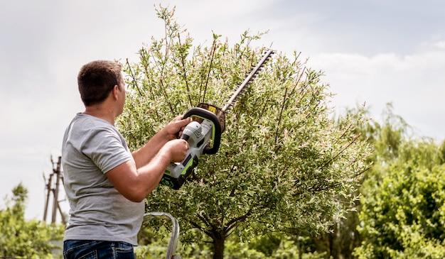 Ogrodnik przycinający drzewa nożycami do żywopłotu