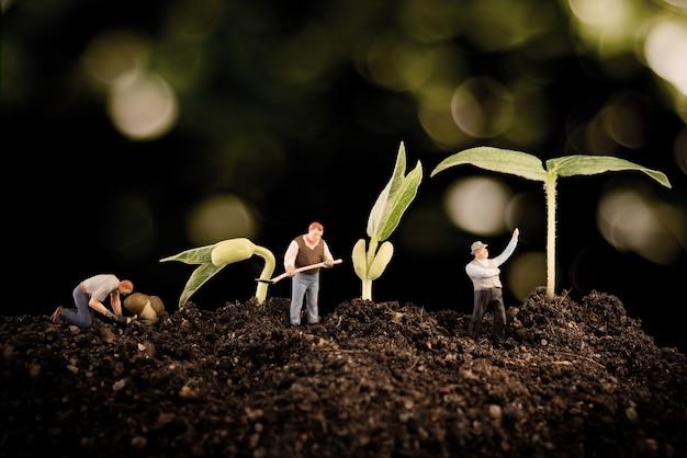 Ogrodnik sadzenia drzewa, rośliny rosnące w glebie na bokeh natury